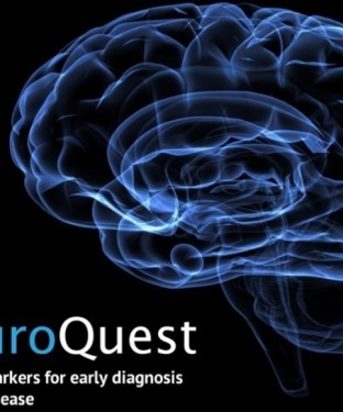 Neuroquest-us-feature