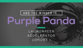 launchpeer-purple-panda-feature