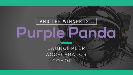 launchpeer-purple-panda-winner