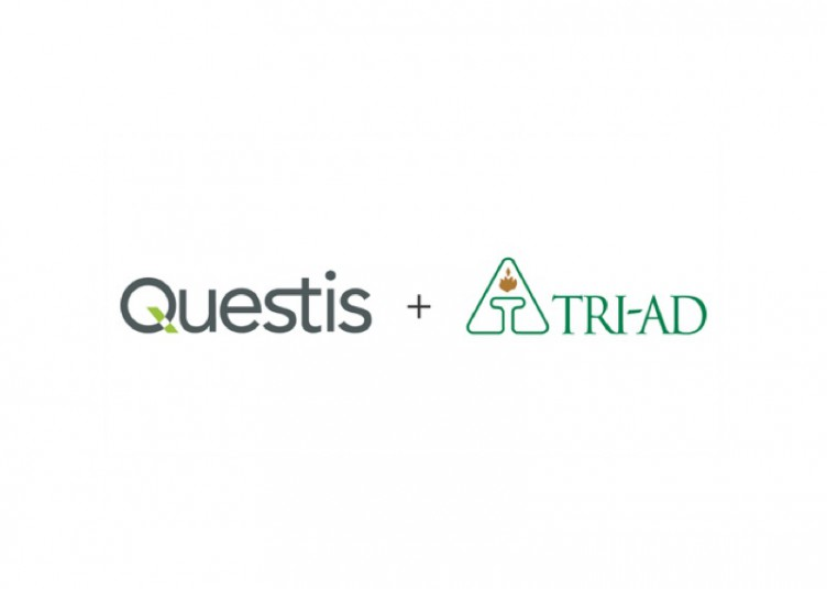 questis-tri-ad-feature